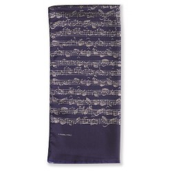 Silk Scarf (blue)